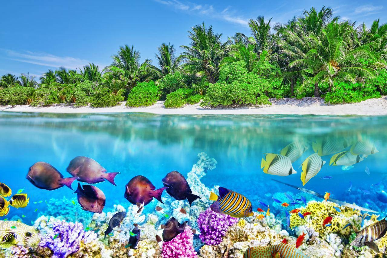 Панно Рыбы в океане остров кафель на стены, плитка 20х30см.