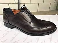 Кожаные коричневые мужские туфли украинского производителя