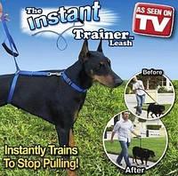 Поводок удерживающий для собак более 30 кг. The Instant Trainer Leash