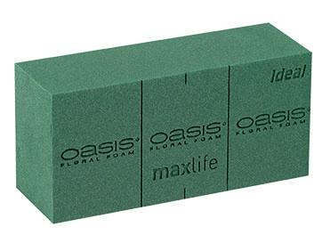 MaxLife Oasis Ideal 35 шт.