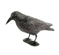 Ворон для отпугивания птиц, фото 1