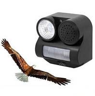 Отпугиватель птиц звуковой OD 12, фото 1
