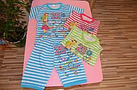 Хлопковая пижама девочек с  шортиками 4-8 лет