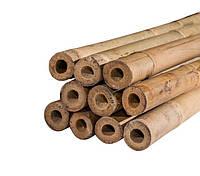 Бамбуковые опоры для подвязки растений