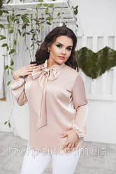 Блузы, рубашки XL+