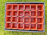 Піддон для установки ємностей з розсадою, кактусами, квітами, фото 4