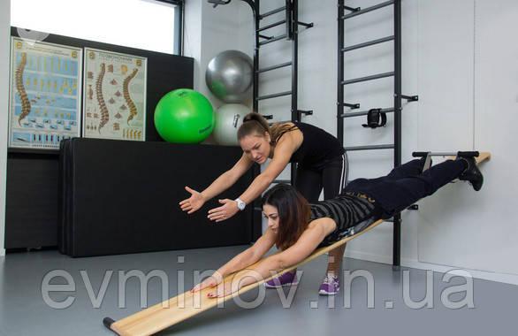 Профилактор Евминова (оригинал, цвет светлый)-тренажер при болях в спине