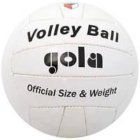 Волейбольный мяч Gola