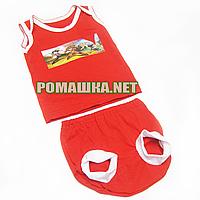 Детский летний костюм р. 80 для мальчика тонкий ткань КУЛИР 100% хлопок 3696 Красный