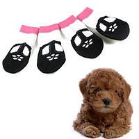 Носочки для собак с цветочком набор 4 шт.