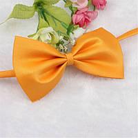 Яркий галстук бабочка для собак