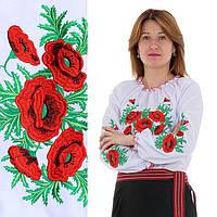 Женская вышиванка с красными маками Соломия