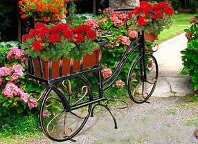 Декор для сада и растений