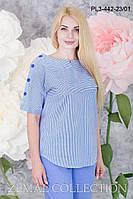 Блуза большого размера ПЛ3-442 р. 48-54