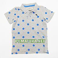 Детская футболка-поло р. 92-98 для мальчика ткань 95% хлопок 5% вискоза 1034 Серый 98
