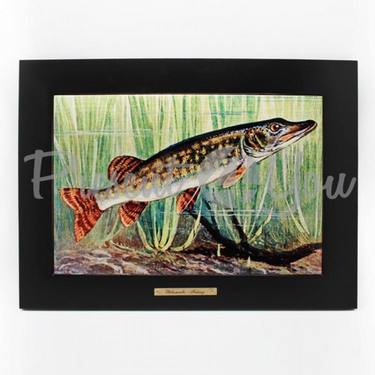 Панно настенное «Рыболовство.Щука»,38х28/20х30 см (263-6005B)