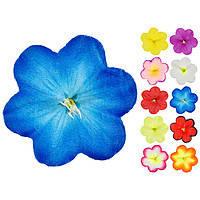 Пресс  (10 расцветок)