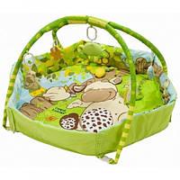 Развивающий коврик «Веселая ферма» Canpol babies 2/287