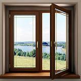 Вікна металопластикові WDS, Aluplast, фото 4