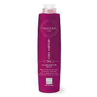 Шампуни Alter Ego Шампунь-бальзам Alter Ego Nourishing Color Silver для защиты цвета осветленных волос 300 мл
