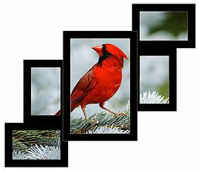 Деревянный фотоколлаж на 5 фото черный Лесеннка 5