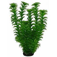 Aquatic Plants (Акватик Плэнтс)  Аквариумное растение, 25 см х 8 шт/уп.