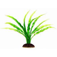 Aquatic Plants (Акватик Плэнтс) Аквариумное растение, 19 см х 8 шт/уп