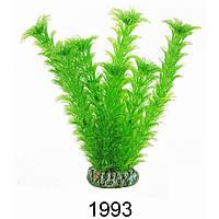 Aquatic Plants (Акватик Плэнтс) Аквариумное растение, 19 см х 8 шт/уп.