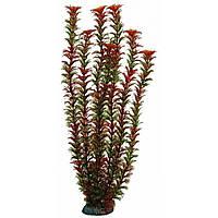 Aquatic Plants (Акватик Плэнтс) Аквариумное растение, 46 см х 6 шт/уп.