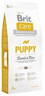 Сухой корм Брит Каре Паппи (Brit Care Puppy) с рисом и ягненком для щенков и молодых собак всех пород,12 кг