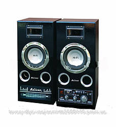 Акустическая система USBFM-51DC