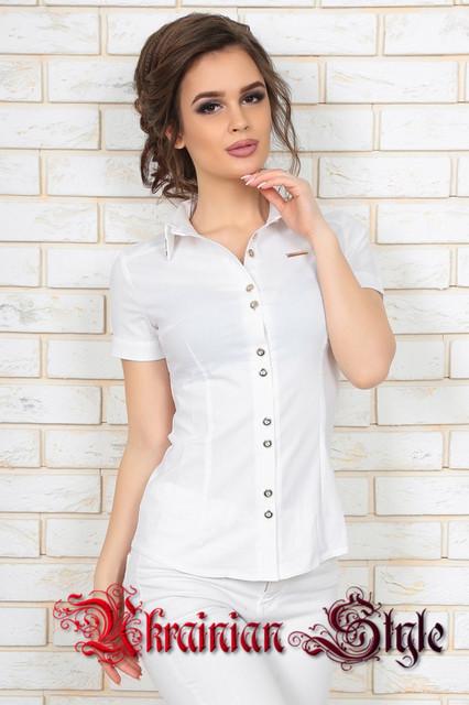 Белые блузы для офиса и школы