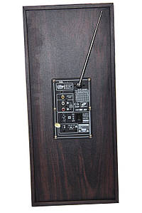 Акустическая система USBFM-69DC