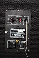 Акустическая система USBFM-613