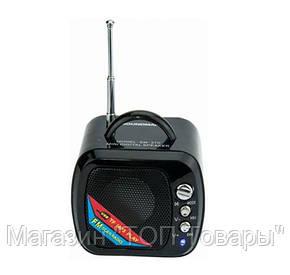 Портативная FM MP3 колонка Soundman SM-270, фото 2