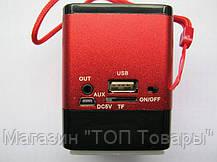 Портативная FM MP3 колонка WSTER WS-695, фото 3