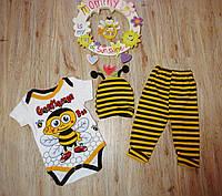 Комплект для мальчика или девочки 3ка (бодик+штанишки+шапочка) Пчелка Турция