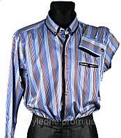 """Рубашка мужская """"Pierre Martin"""". Синяя. В полоску. Длинный рукав"""