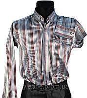 """Рубашка мужская """"Pierre Martin"""". Серая(длинный рукав)"""