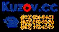 Накладка решетки радиатора для Hyundai Getz '02-05 хром (FPS)