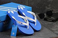Мужские вьетнамки Adidas голубые 2416