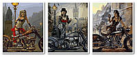 Картины по номерам 50х120 см. Триптих Мото-Леди-2