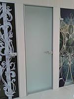 Стеклянные двери в алюминиевой коробке с мини петлей