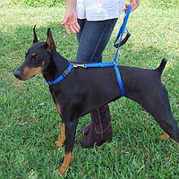 Поводок Для Собак The Instant Trainer Leash более 30 кг!Акция