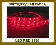 Лента светодиодная красная LED 5630 Red - 5 метров в силиконе!Акция