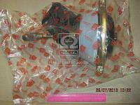 Камера привода сцепления МАЗ 64229-1602705 Дорожная карта