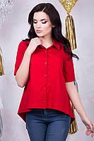 Donna-M рубашка IR Рубашка, фото 1