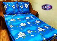 Набор постельного белья №р69