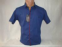 Мужская рубашка с коротким рукавом на кнопках Paul Semih, Турция