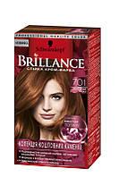 Brillance - краска для волос № 701 - холодный топаз  60 мл